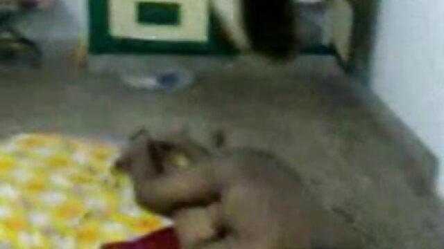 বড়ো বাংলা video xx মাই, মাই এর, বড় সুন্দরী মহিলা