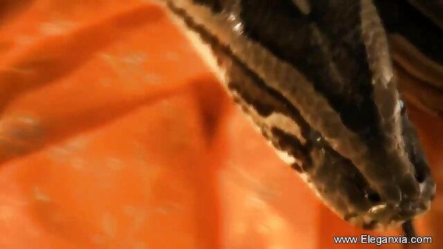 বাঁড়ার রস খাবার, শ্যামাঙ্গিণী বাংলাxxx video hd